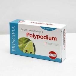Polypodium leucotomos 60cpr - Kos