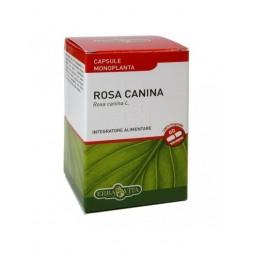 Rosa canina 60cps - Erbavita