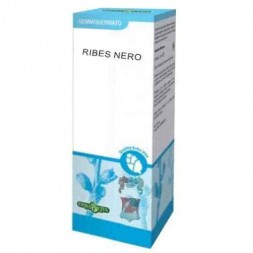 Ribes nero gemme - Erbavita