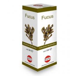 KOS - Fucus soluzione idroalcolica 100ml