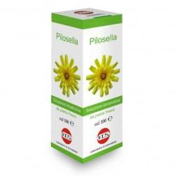 Kos - Pilosella 100ml