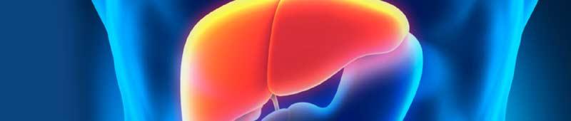 rimedi naturali per il fegato